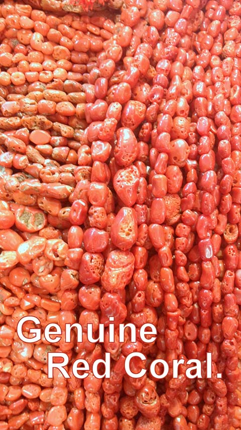 Genuine red coral. It can be very difficult to tell the difference between real and fake red coral.