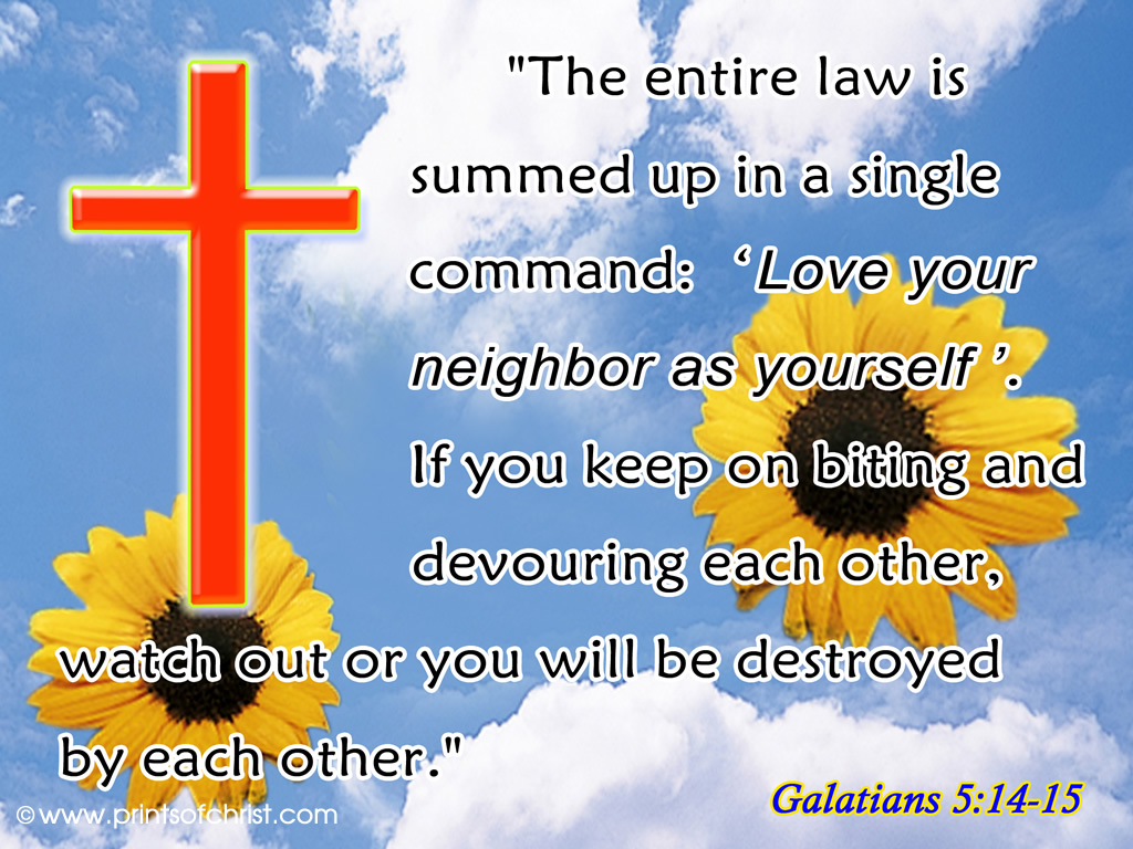 Galatians 5:14 Background