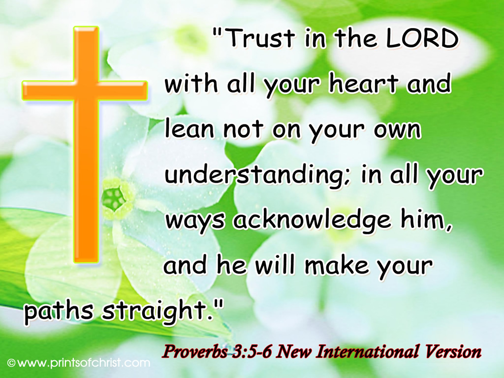 Trust in the lord picture