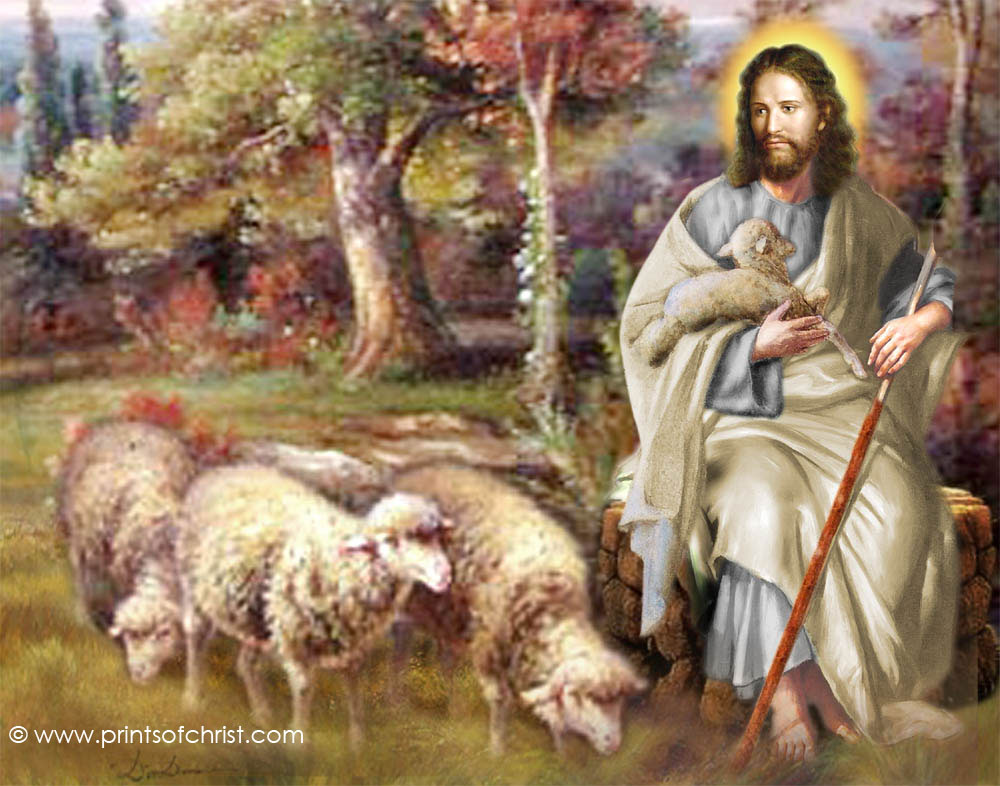 Jesus the Shepherd Picture