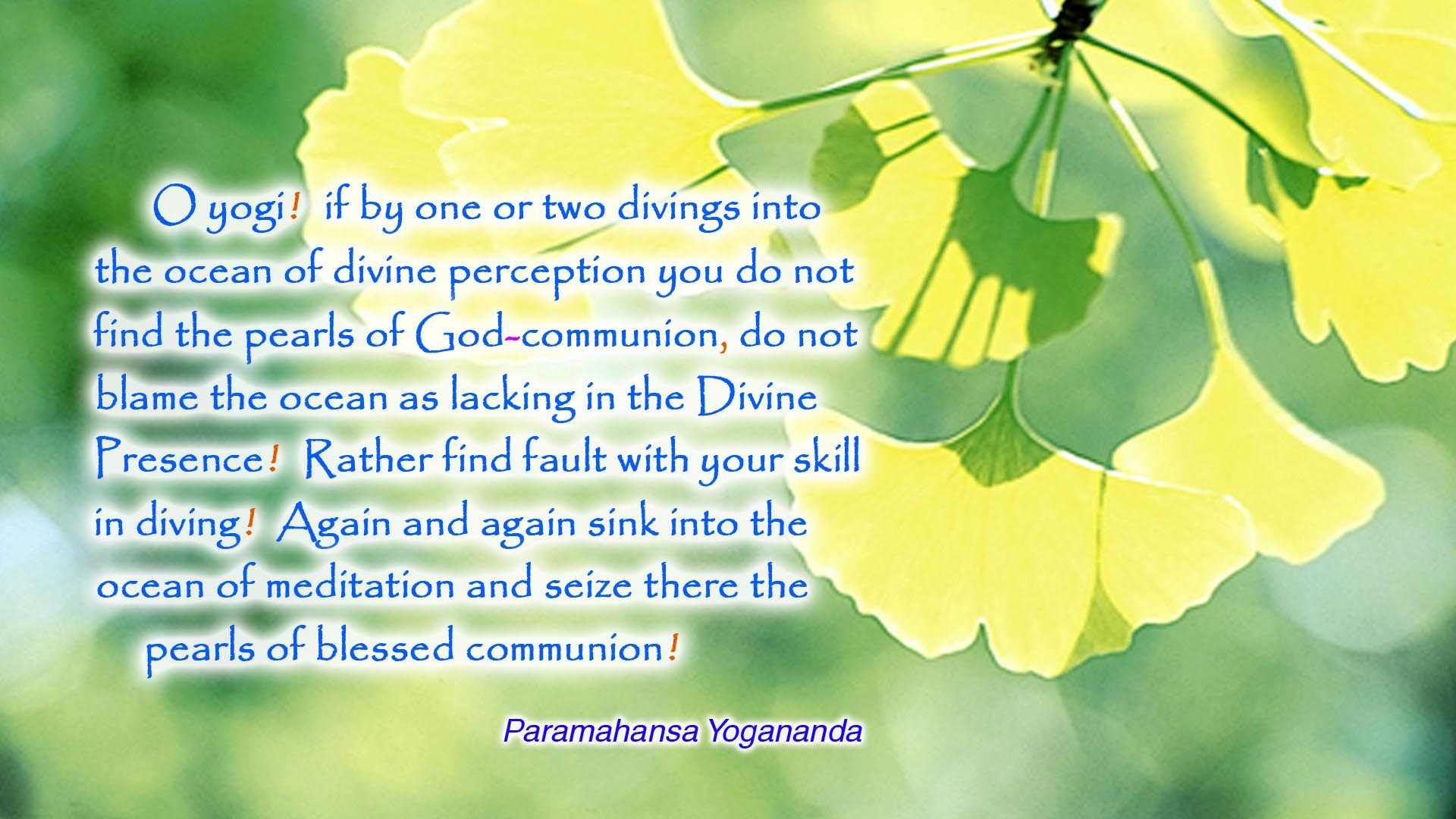 Yogananda ocean of meditation wallpaper
