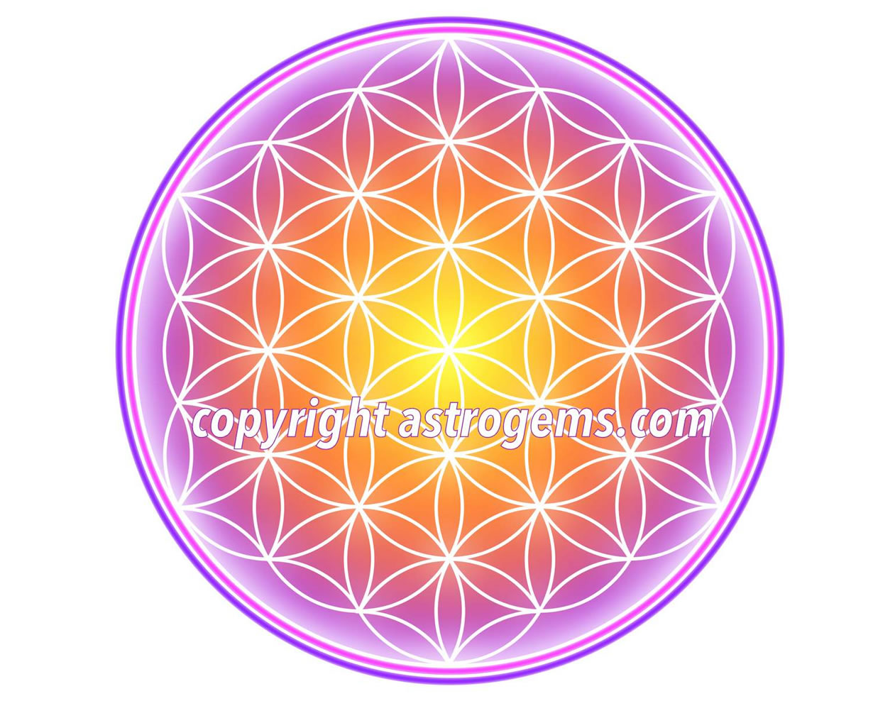 Flower of Life Yantra 3