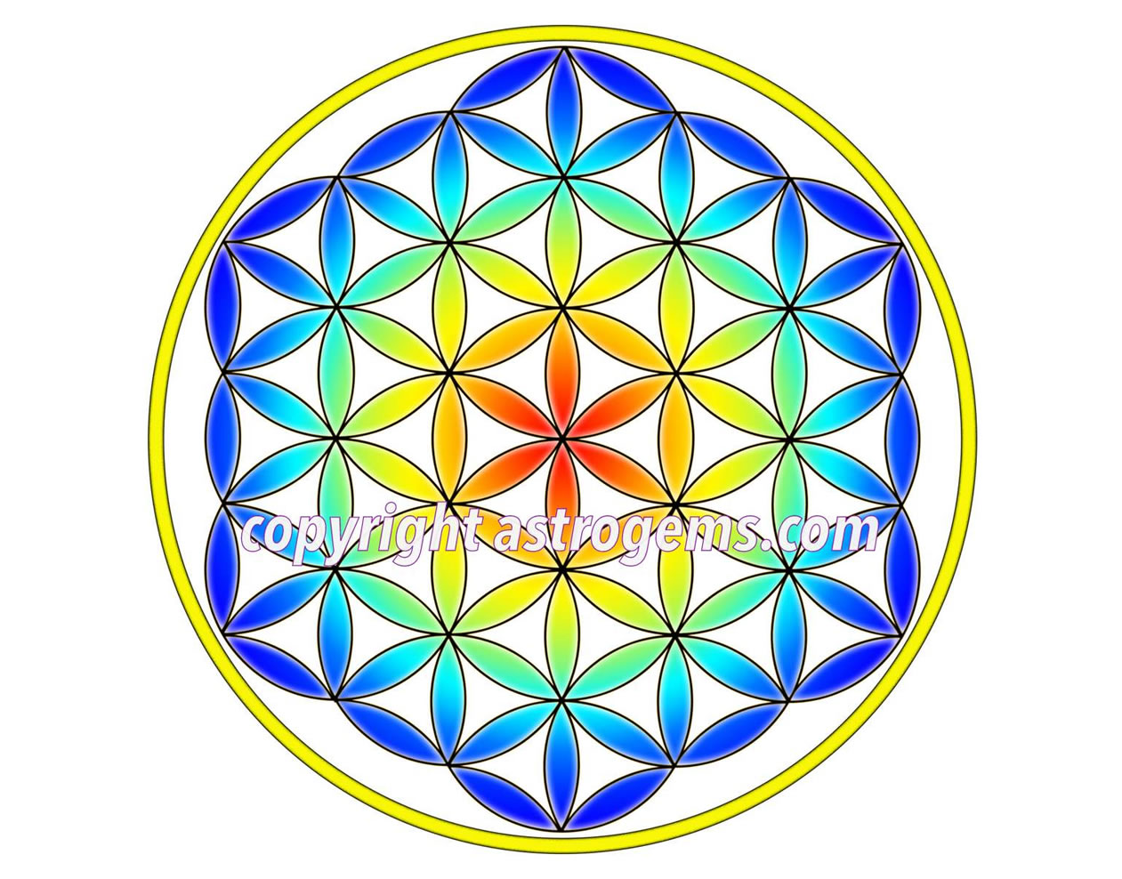 Flower of Life Yantra 4