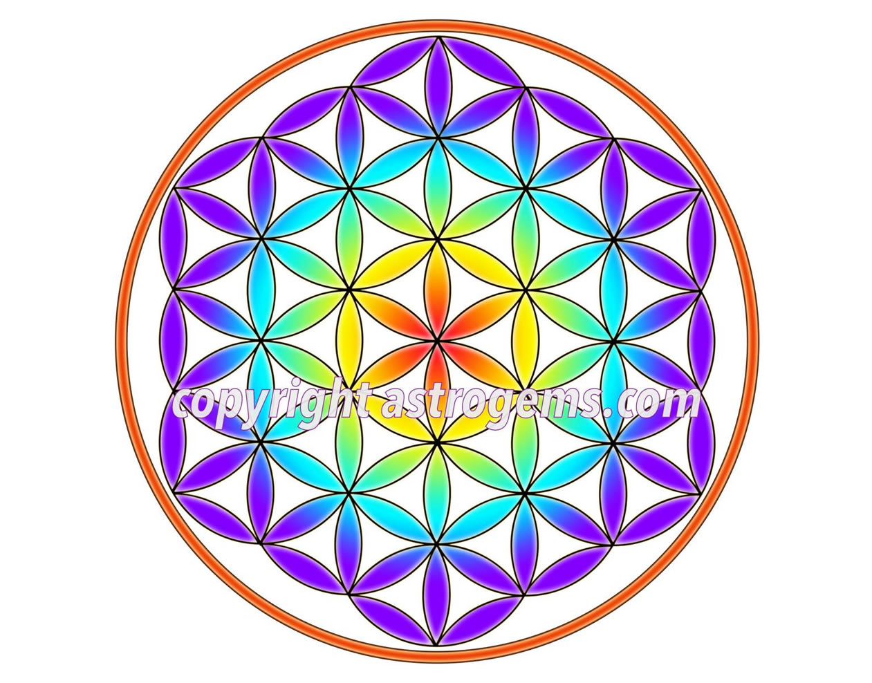 Flower of Life Yantra 5
