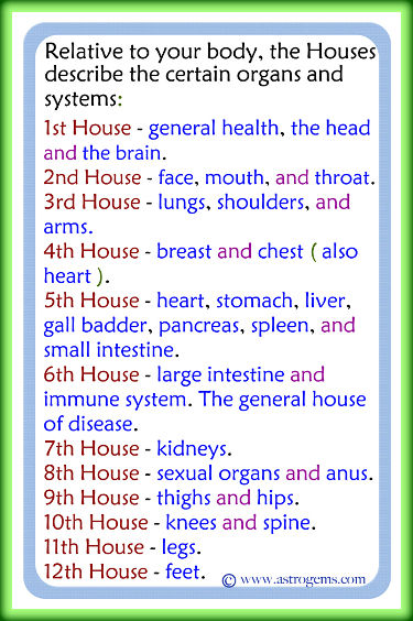 Vedic astrological description of how the 12 houses relate to bodily organs and systems.